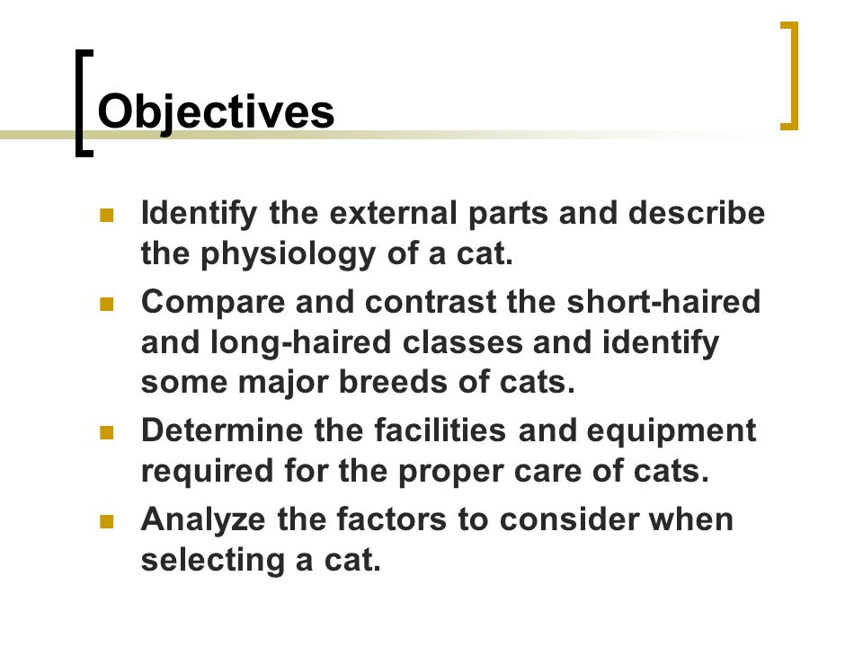 Objectives Identify the external parts and describe the physiology of a cat.