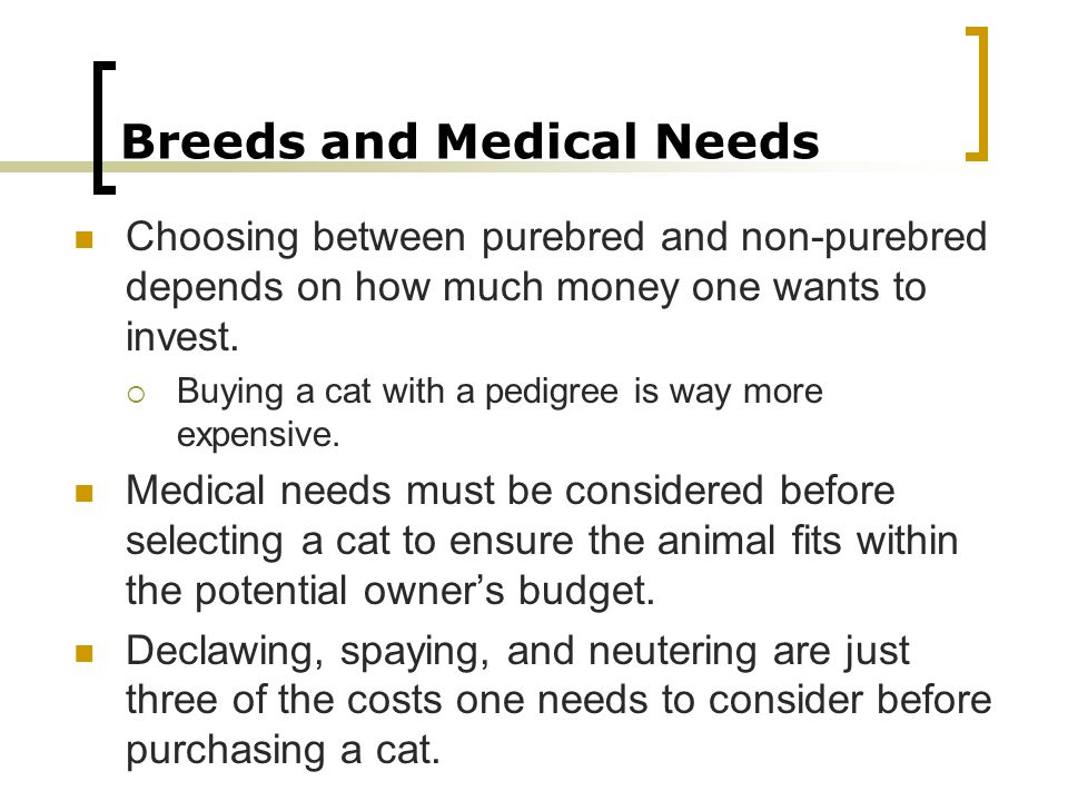 Breeds and Medical Needs