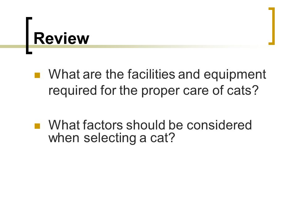 Review What are the facilities and equipment required for the proper care of cats.