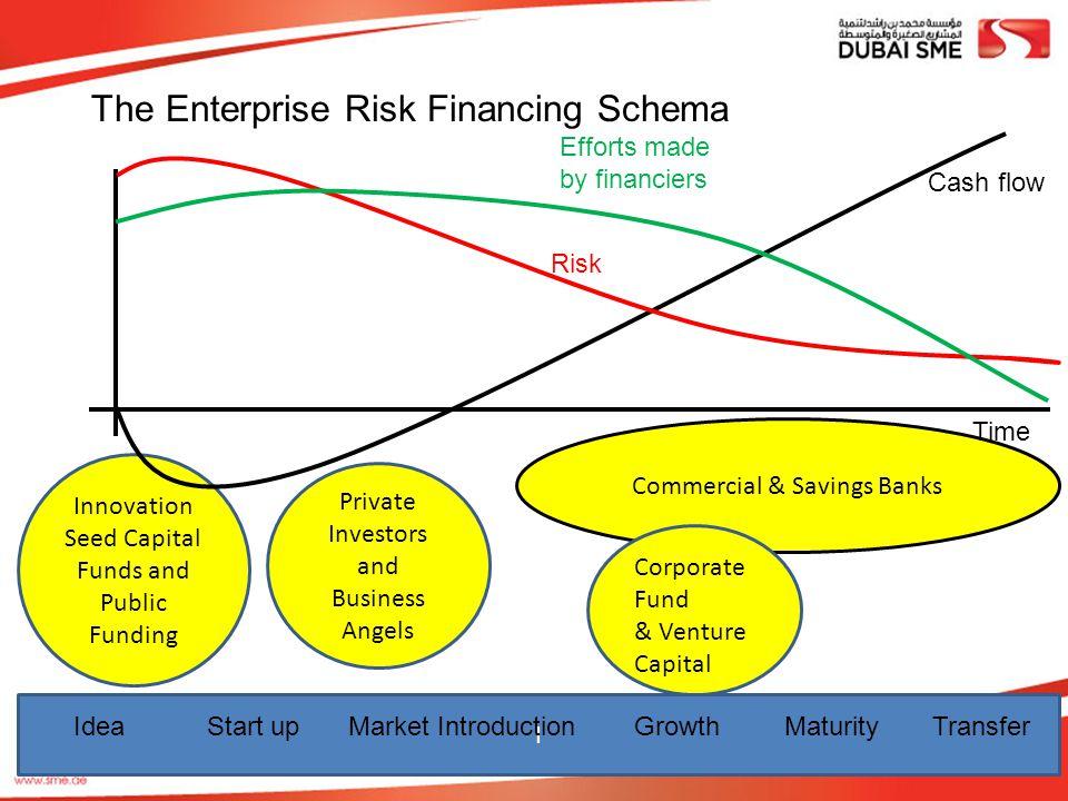 The Enterprise Risk Financing Schema