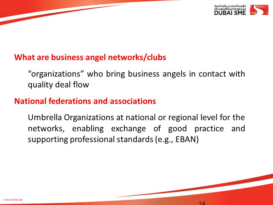 What are business angel networks/clubs