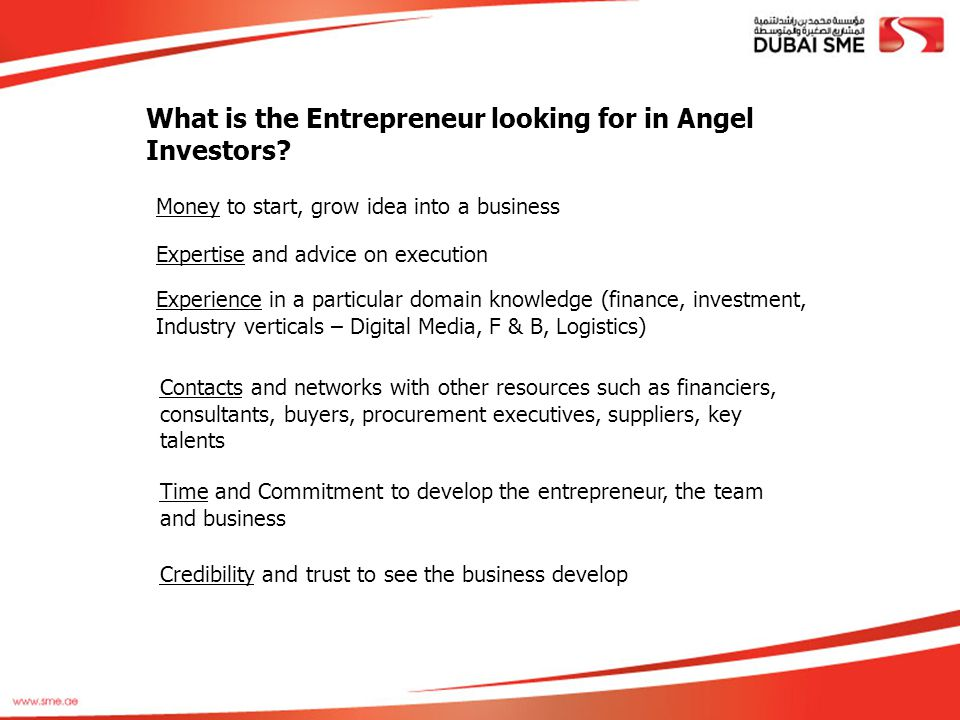 What is the Entrepreneur looking for in Angel Investors