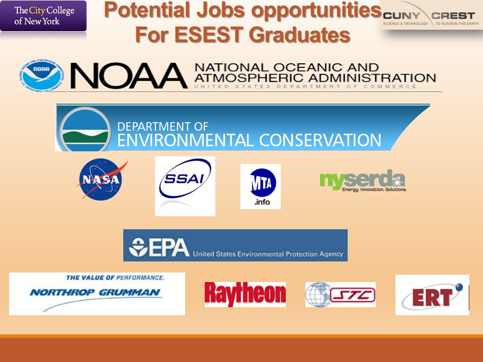 Potential Jobs opportunities