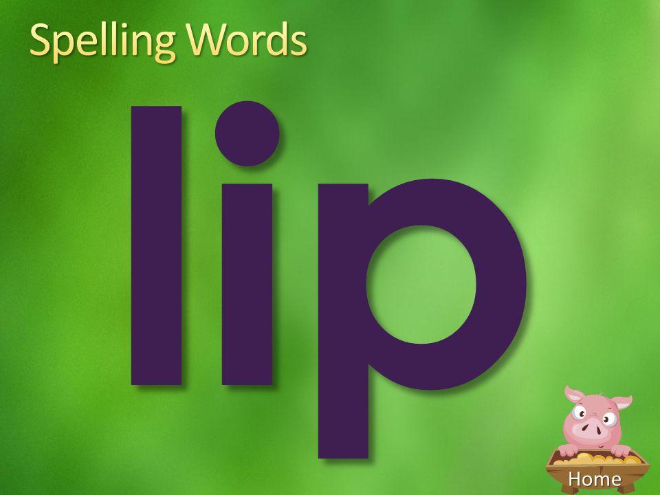 Spelling Words lip