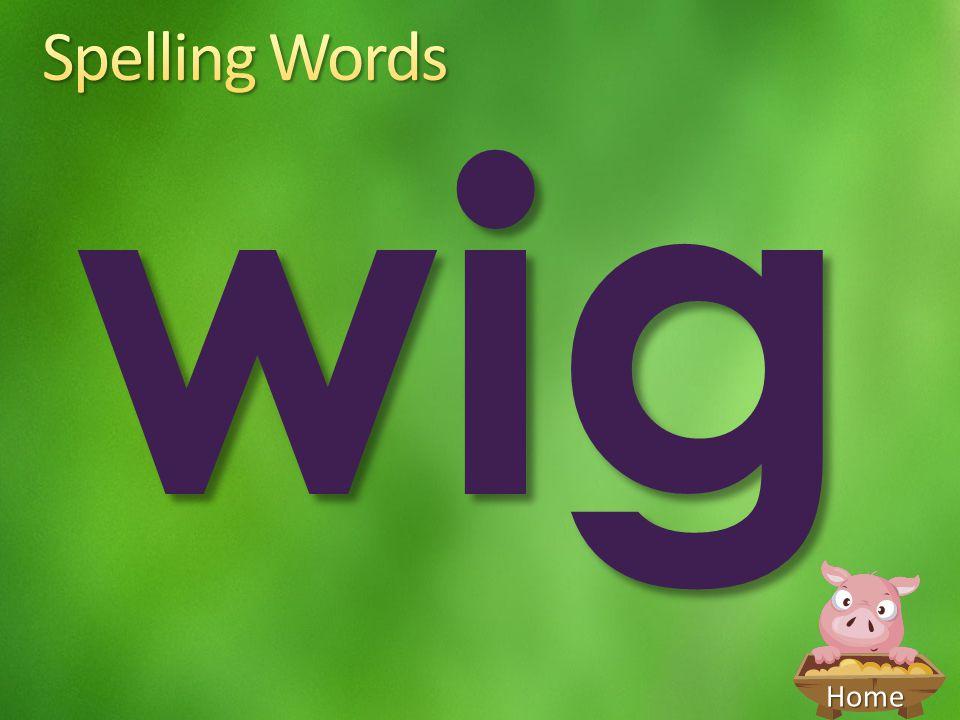Spelling Words wig