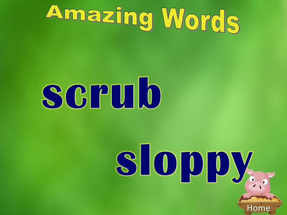 Amazing Words scrub sloppy