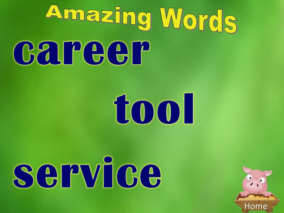 Amazing Words career tool service