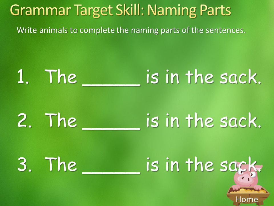 Write animals to complete the naming parts of the sentences.