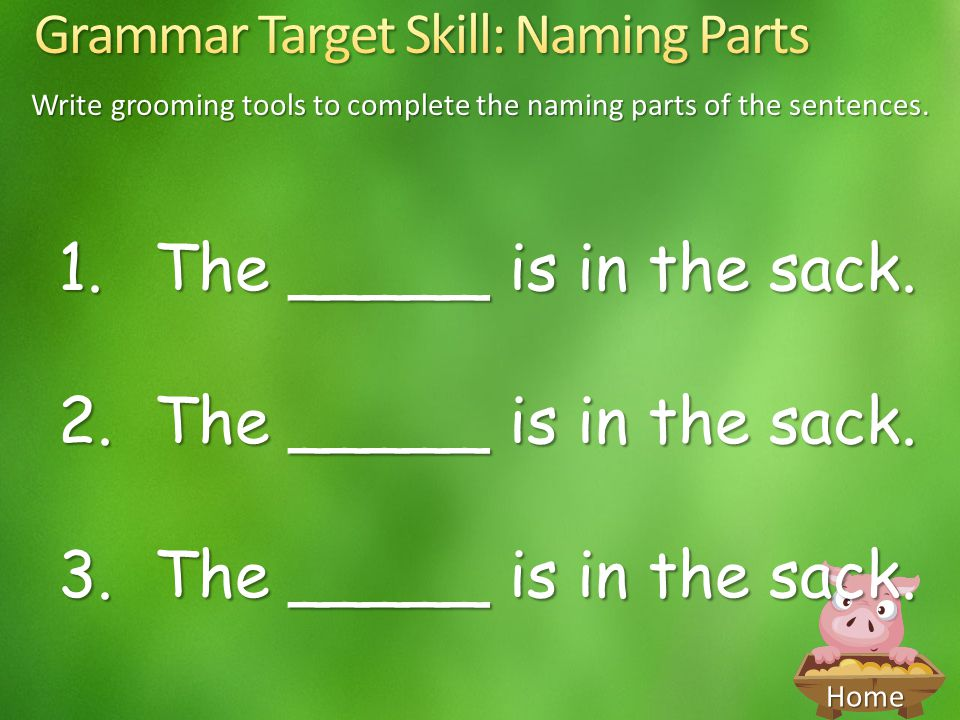 Write grooming tools to complete the naming parts of the sentences.