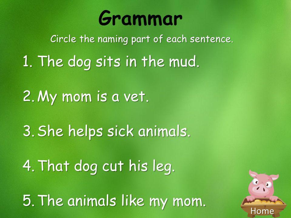 Circle the naming part of each sentence.