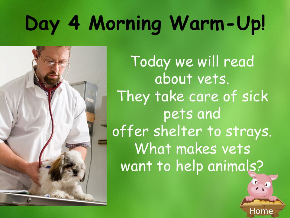 Day 4 Morning Warm-Up! Today we will read about vets.