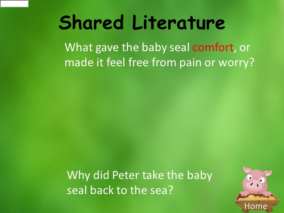 Shared Literature What gave the baby seal comfort, or made it feel free from pain or worry.