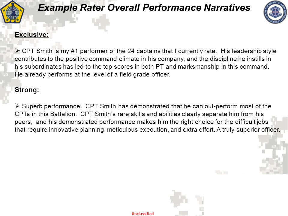 Example Rater Overall Performance Narratives