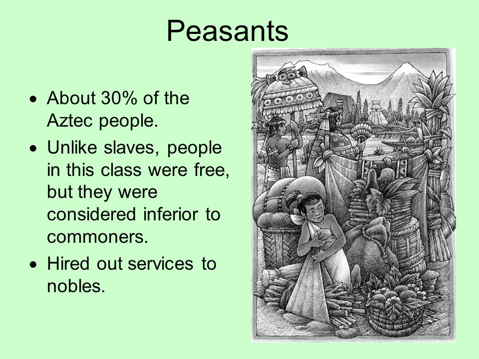 Peasants About 30% of the Aztec people.