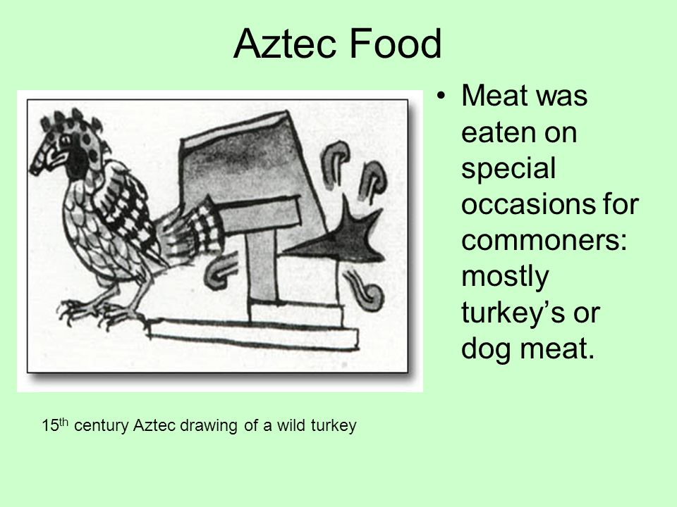 Aztec Food Meat was eaten on special occasions for commoners: mostly turkey's or dog meat.