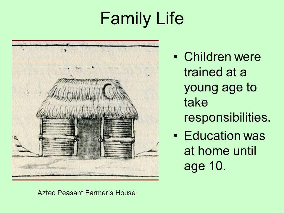 Aztec Peasant Farmer's House