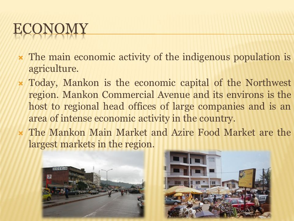Economy The main economic activity of the indigenous population is agriculture.