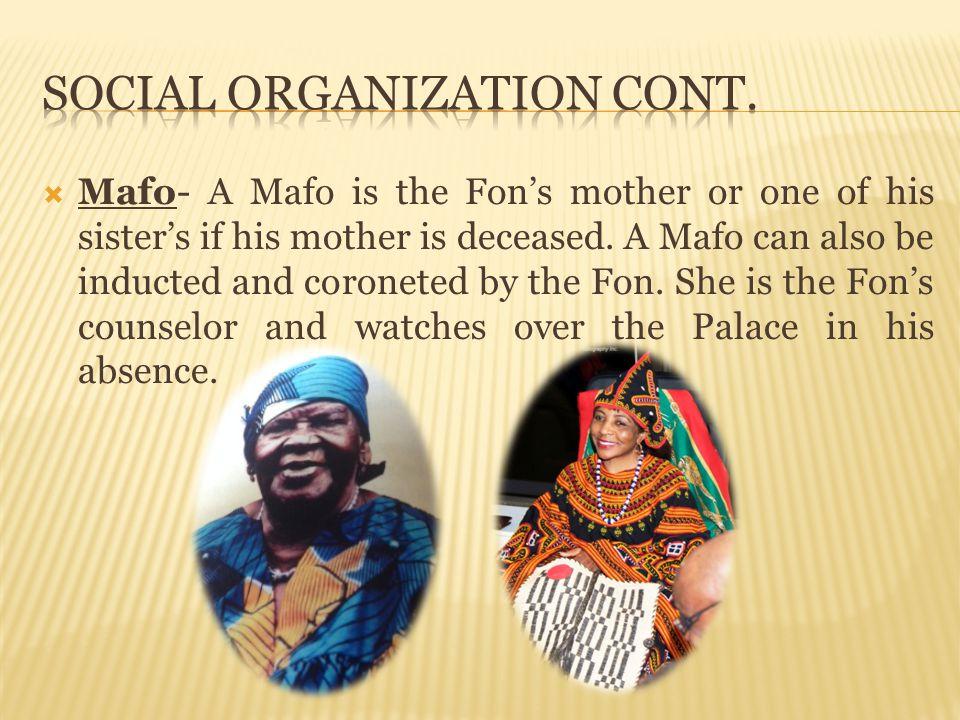 Social organization cont.