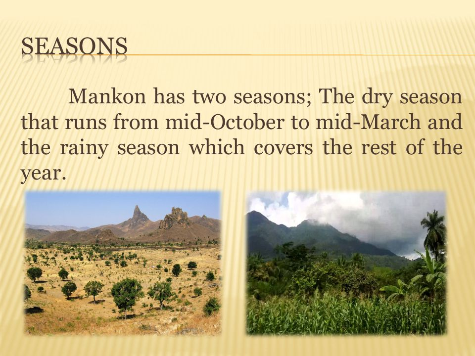 Seasons Mankon has two seasons; The dry season that runs from mid-October to mid-March and the rainy season which covers the rest of the year.