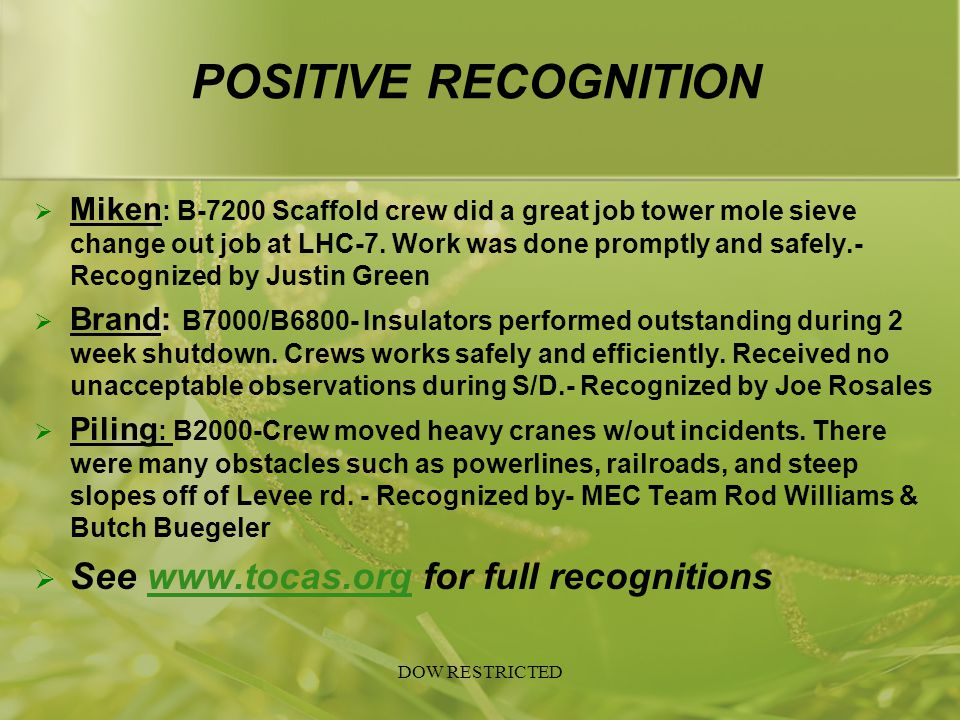 POSITIVE RECOGNITION See www.tocas.org for full recognitions