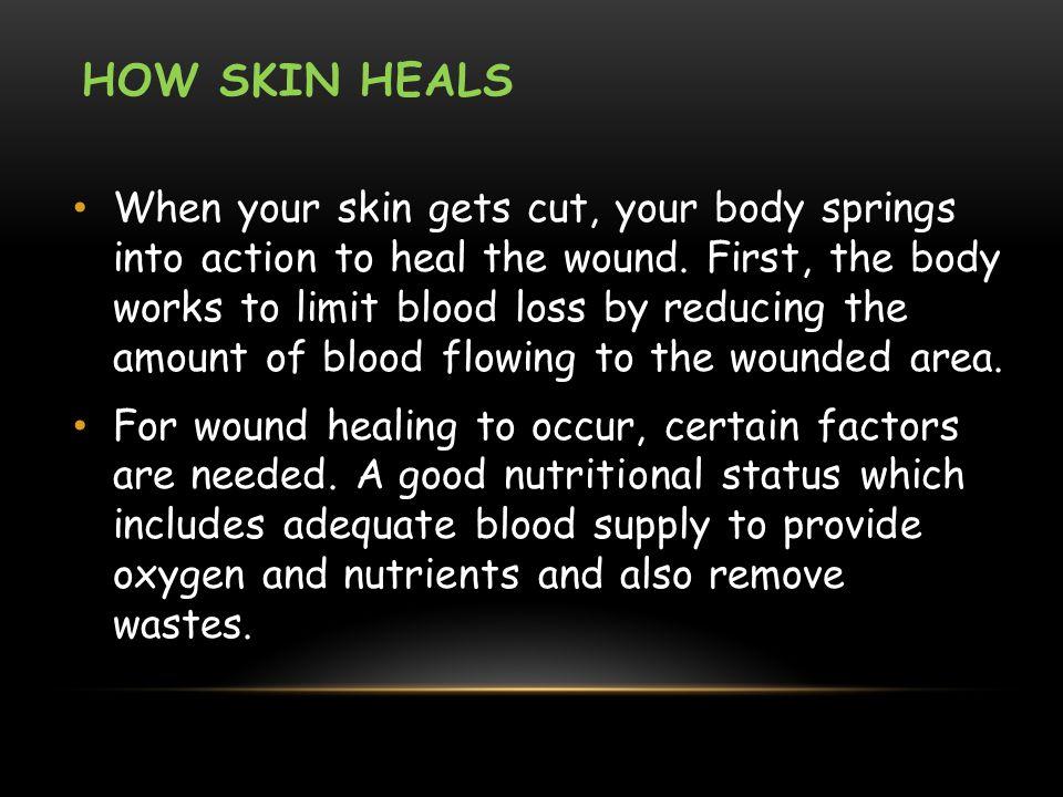 How Skin Heals