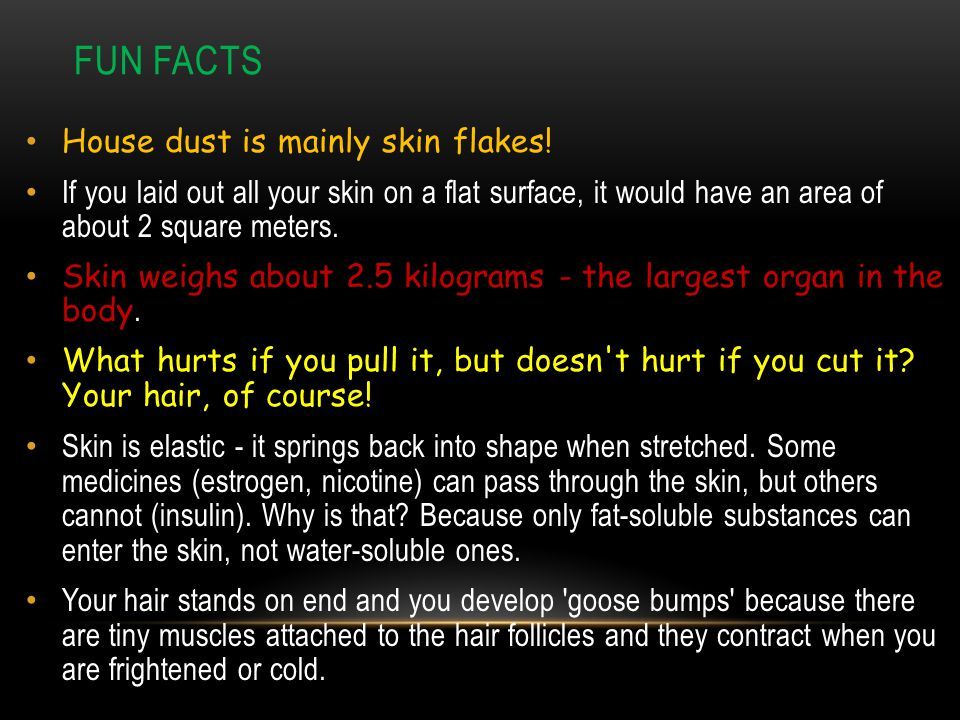 Fun Facts House dust is mainly skin flakes!