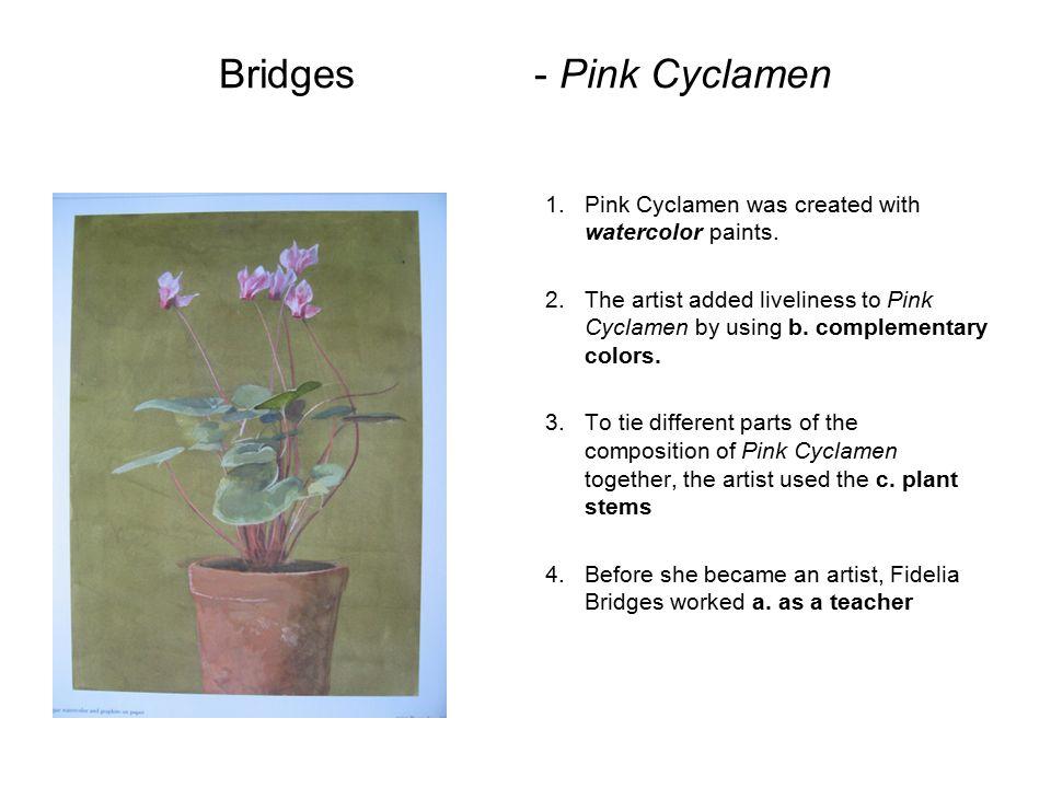 Bridges - Pink Cyclamen