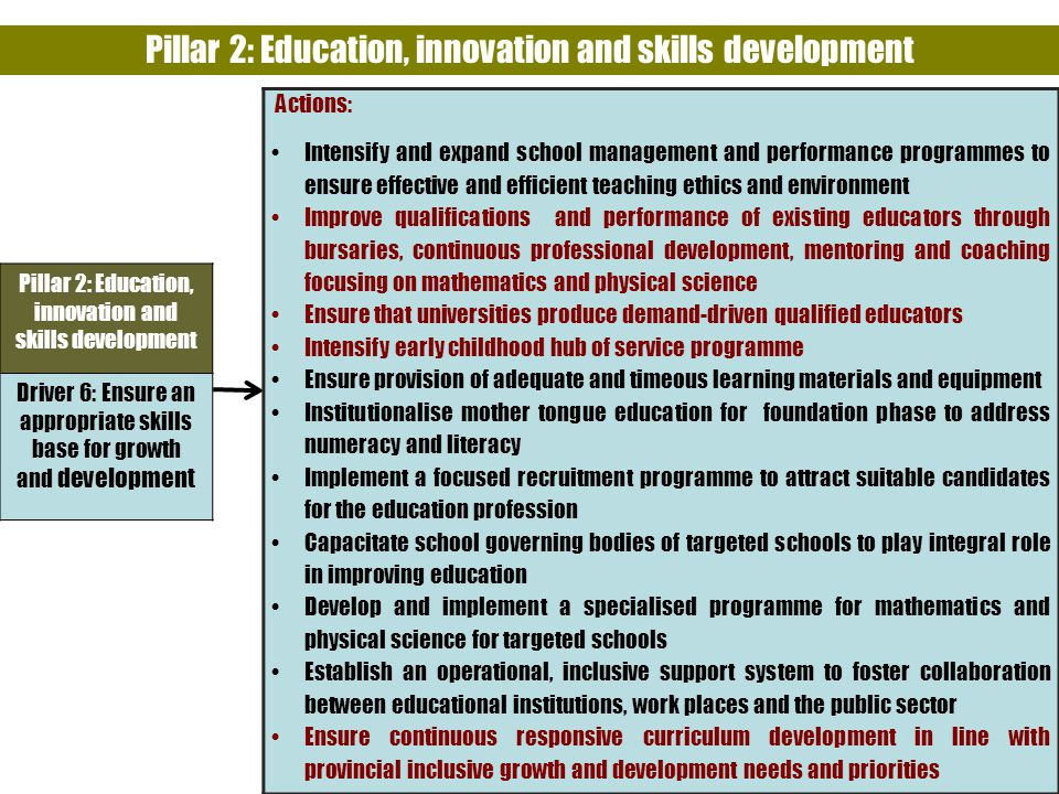 Pillar 2: Education, innovation and skills development