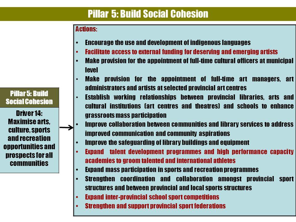 Pillar 5: Build Social Cohesion