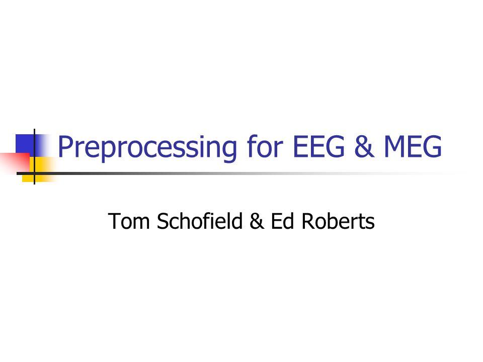 Preprocessing for EEG & MEG