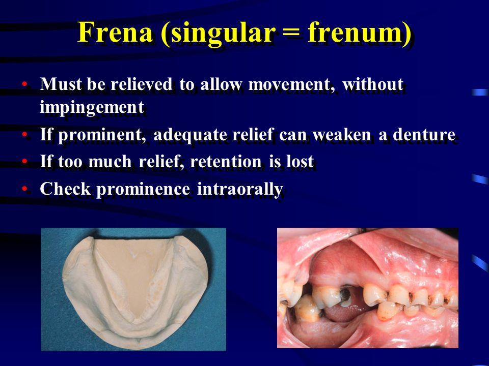 Frena (singular = frenum)