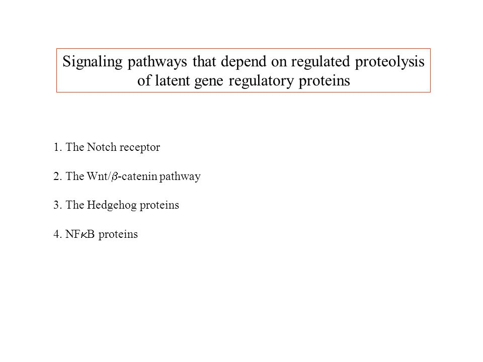 Signaling pathways that depend on regulated proteolysis