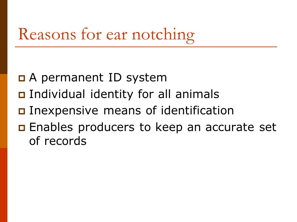 Reasons for ear notching