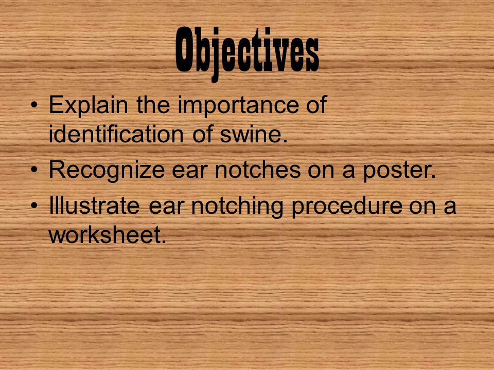 Objectives Explain the importance of identification of swine.