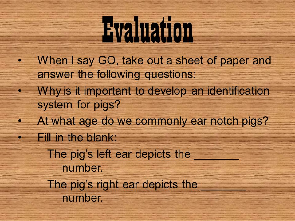 Evaluation When I say GO, take out a sheet of paper and answer the following questions: