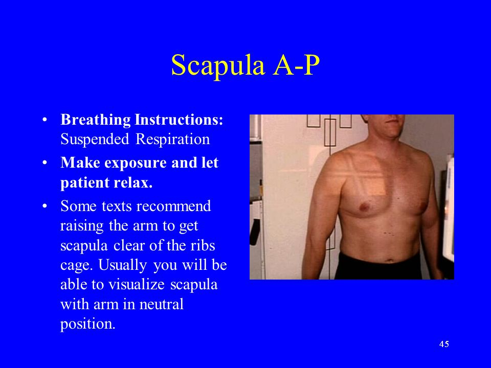 Scapula A-P Breathing Instructions: Suspended Respiration