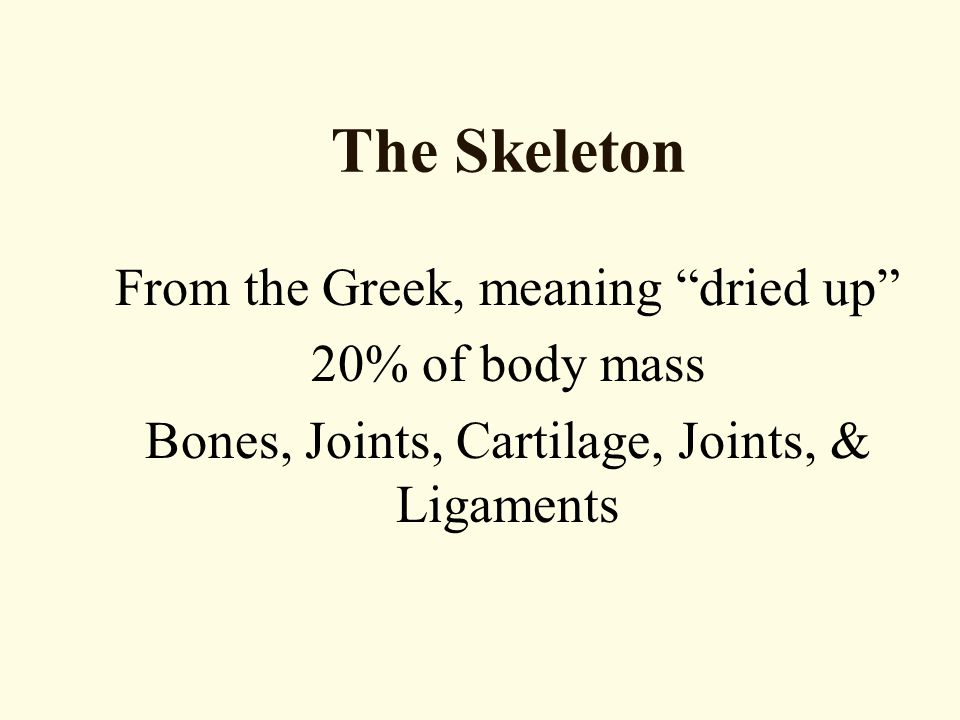 The Skeleton From the Greek, meaning dried up 20% of body mass