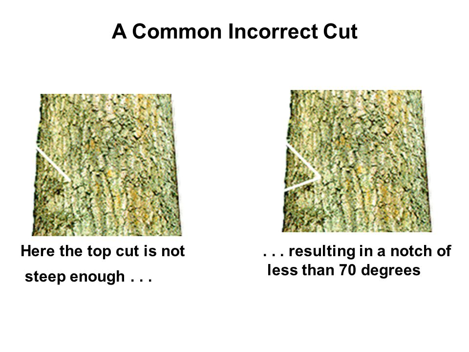 A Common Incorrect Cut Here the top cut is not steep enough . . .