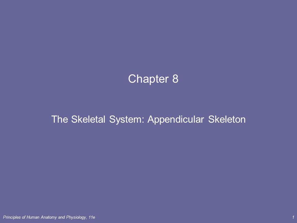 The Skeletal System: Appendicular Skeleton