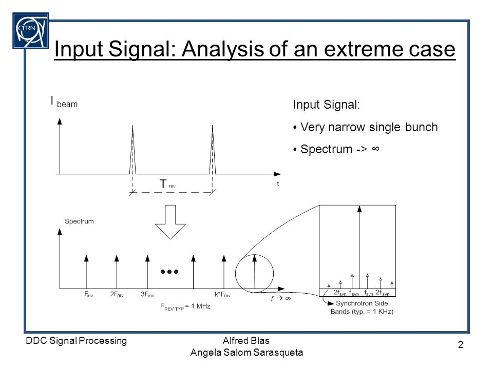 Input Signal: Analysis of an extreme case