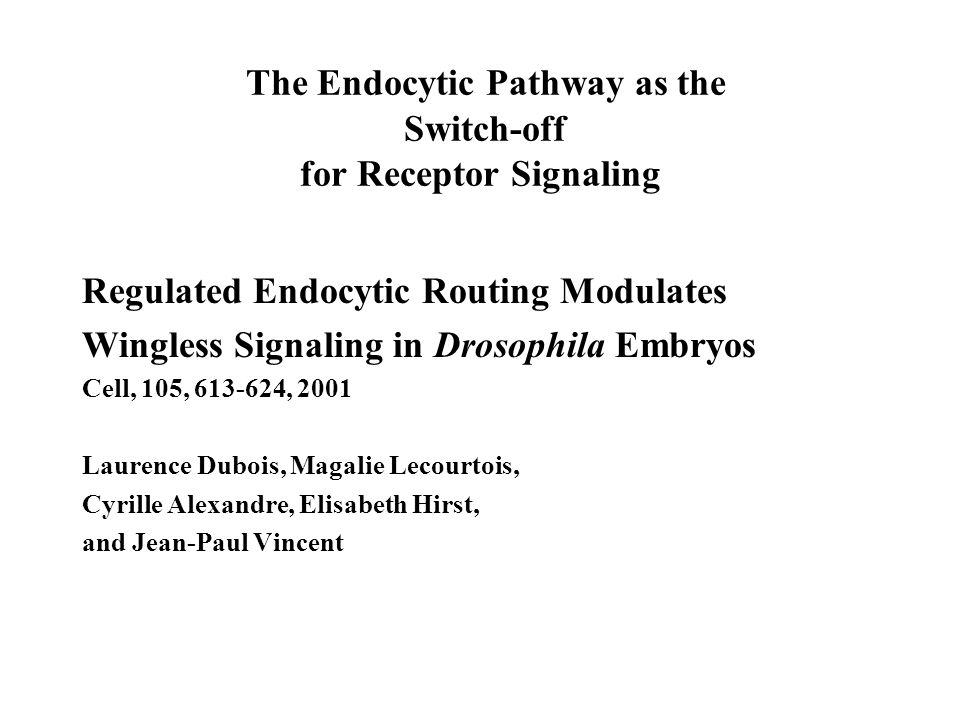 The Endocytic Pathway as the Switch-off for Receptor Signaling