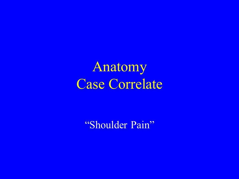 Anatomy Case Correlate
