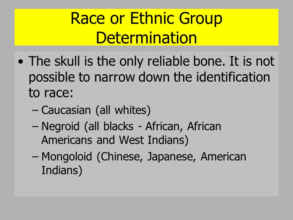 Race or Ethnic Group Determination