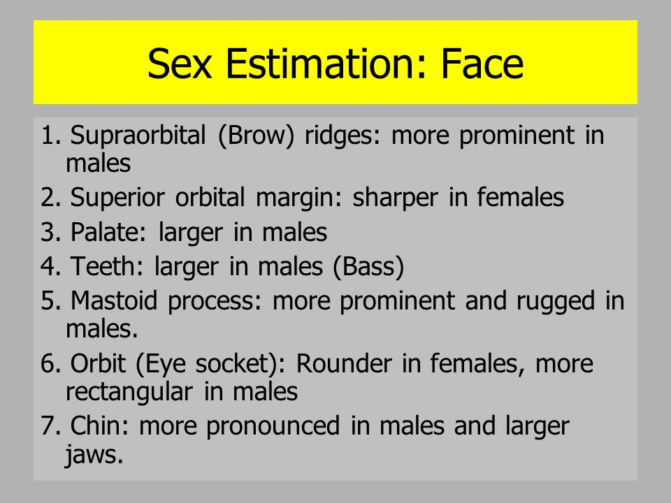 Sex Estimation: Face 1. Supraorbital (Brow) ridges: more prominent in males. 2. Superior orbital margin: sharper in females.