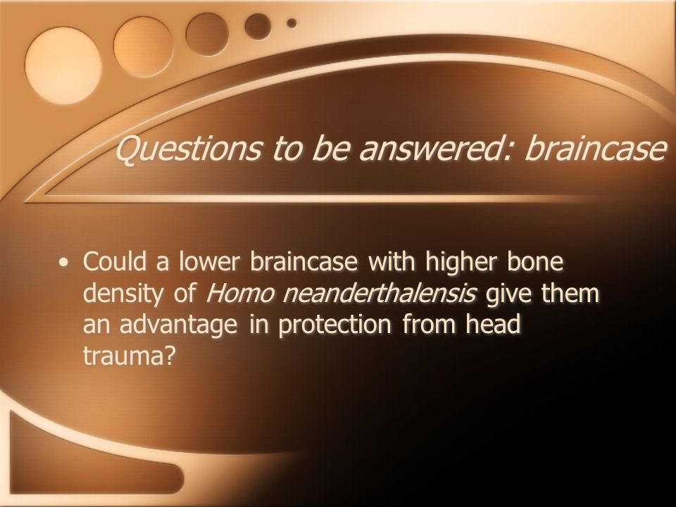 Questions to be answered: braincase