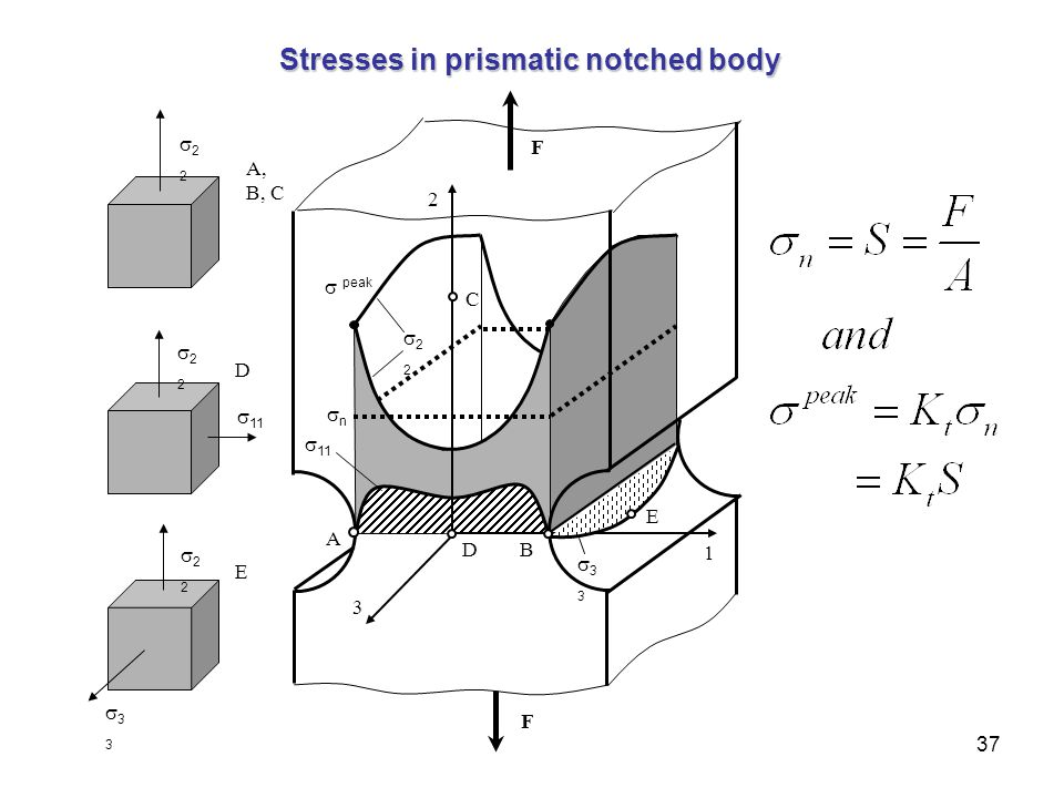 Stresses in prismatic notched body