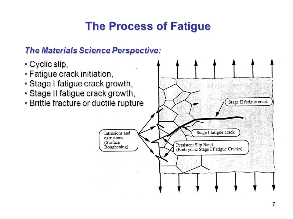 The Process of Fatigue The Materials Science Perspective: Cyclic slip,
