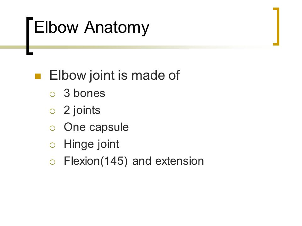 Elbow Anatomy Elbow joint is made of 3 bones 2 joints One capsule