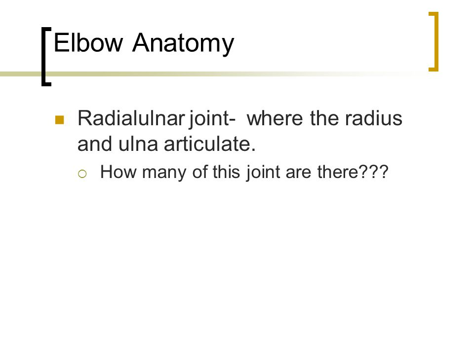Elbow Anatomy Radialulnar joint- where the radius and ulna articulate.