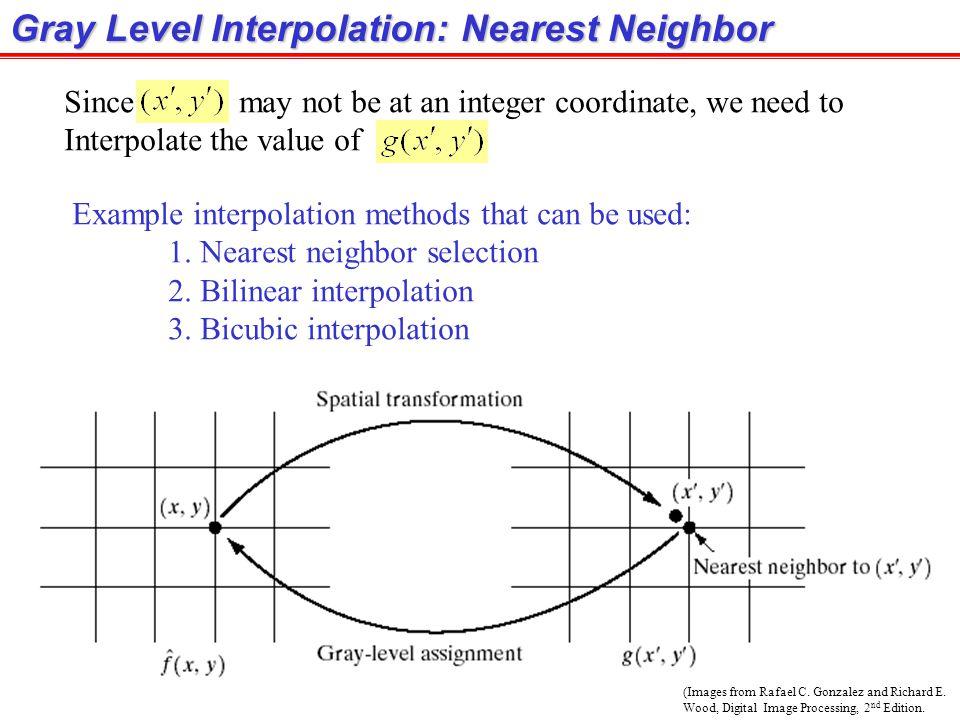 Gray Level Interpolation: Nearest Neighbor